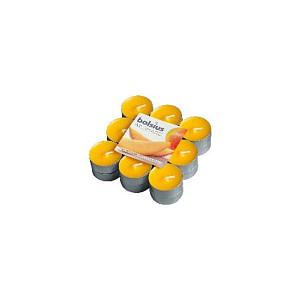 Lumanare pastila parfumata 18 buc mango PB18 10 Mango