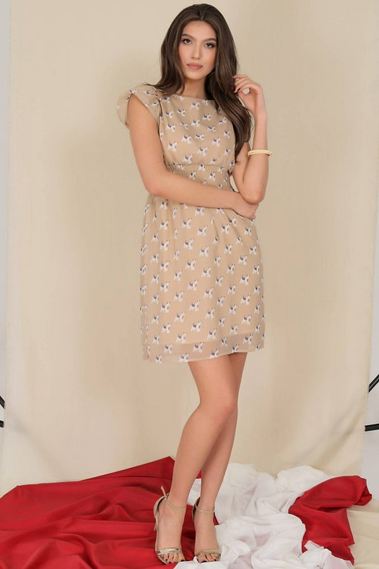 delicate chiffon dress aimelia dr4280 with puffed sleeves 9795 2 scaled